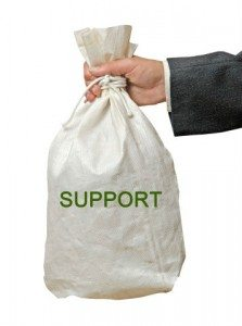 Child support bag